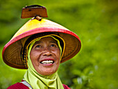 'A Woman Wearing A Conical Hat At The Tea Plantation; Sumatran Indonesia'