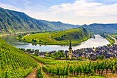 Germany , Moseltal , Mosel Valley Bremm City