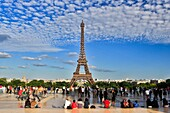France , Paris City, Eiffel Tower from  Trocadero