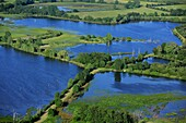 France, Indre (36), the Regional Natural Park of the Brenne, landscape with ponds and wetlands (aerial photographs)