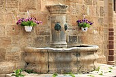 France, Lozère (48), Canourgue, labeled Village Stage, the fountain adjoining the collegiate church St. Martin