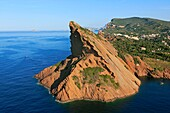 France, Bouches-du-Rhone (13), the Bec de l'Aigle, Figuerolle sheltering the cove of the port of La Ciotat, cliffs and landscape of the Mediterranean coast (aerial photo)