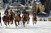White Turf Horse Race 2013, St. Moritz, Engadine valley, Upper Engadin, Canton of Graubuenden, Switzerland
