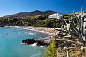 View to Calanca Beach, Marina di Camerota, Cilento, Campania, Southern Italy, Europe