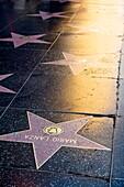Hollywood Walk of Fame  Los Angeles, California, USA
