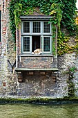 House by the canals, Brugge, Bruges, Flanders, Belgium.
