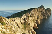 Natural Park Dragonera Ponent Andratx Mallorca Baleares Spain