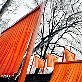 The Gates, Artwork from Christo and Jeanne-Claude, Centralpark, New York
