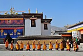 China, Qinghai, Amdo, Tongren Rebkong, Monastery of Gomar Guomari Si, Losar New Year festival, Opening ceremony, Procession of parasol and incense bearers
