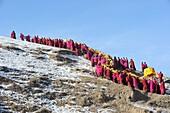 China, Gansu, Amdo, Xiahe, Monastery of Labrang Labuleng Si, Losar New Year festival, Giant Thangka bearers climbing uphill