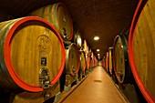 Italy, Lombardy, Valtellina, Chiuro, Casa vinicola Nino Negri, Nino Negri vinery, callar