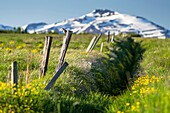 Tranquil-scene in Akureyri area near of Dalvik  Iceland