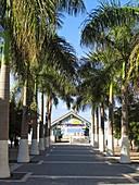 Avenue to water taxi jetty where cruise ship passengers arrive Philipsburg Dutch Sint Maarten