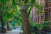 Brownstone row houses in the Park Slope neighborhood in Brooklyn, New York