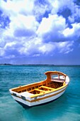 Graphic Closeup of Colorful Fishing Boat in Aruba