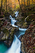 Many small cascades of Lepenjica, a tributary of the Isonzo in the fall, Gorenjska, Slovenia