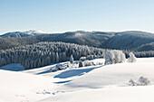 Panoramic view with Feldberg in the background, Schauinsland, near Freiburg im Breisgau, Black Forest, Baden-Wuerttemberg, Germany