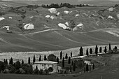 Crete, landscape with clayhills, cottage, cypresses, Val dOrcia, Orcia valley, UNESCO World Heritage Site, typical Tuscan landscape, near Taverne d´Arbia, province of Siena, Tuscany, Italy, Europe