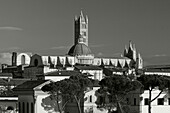 Townscape with Duomo Santa Maria, Siena, UNESCO World Heritage Site, Tuscany, Italy, Europe