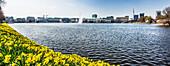 The Binnenalster of Hamburg at springtime, Hamburg, Northern Germany, Germany