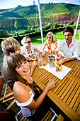 Group of young people drinking wine, Gamlitz, Styria, Austria