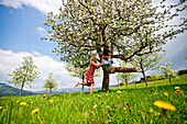 Woman pushing a man on a swing in an apple tree, Stubenberg, Styria, Austria