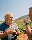 CROATIA, Hvar, Dalmatian Coast, vintner Andro Tomic in his vineyard in Hvar Island.