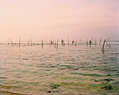 SRI LANKA, Asia, view of stick fishing in Indian Ocean