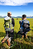 ALASKA, Homer, hikers photograph a grizzly (brown) bear, Katmai National Park, Katmai Peninsula, Hallow Bay, Gulf of Alaska