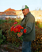 AUSTRIA, Podersdorf, local George Weiss picks flowers early in the morning, Burgenland