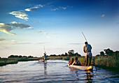 BOTSWANA, Africa, Okavango Delta, Exploring the Okavango River in a Dugout Canoe at dusk