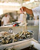BRAZIL, Belem, South America, shrimp for sale, Ver-O-Peso fish market