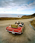 USA, California, Big Sur, couple on a road trip in a 1965 Ford Mustang, Hwy 1