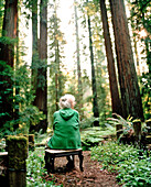 USA, California, senior woman sitting in redwood forest