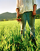 USA, California, Organic farmer holding radishes in field, Fort Jones