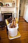 USA, California, Organic pig legs in a bucket, Oakland