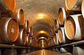 USA, California, Gundlach Bundschu Winery, wine barrels stacked in a cellar
