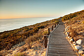 USA, California, Malibu, a boardwalk walking path at Big Dume with the Pacific Ocean in the distance