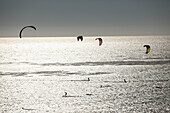 USA, California, Malibu, kite surfers play in the Pacific off of Broad Beach