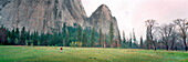 USA, California, Yosemite National Park, hiking along the valley floor near Curry Village