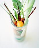 France, Burgundy, vegetables in glass, Le Charlemagne Restaurant, Pernand-Vergelesses