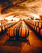 FRANCE, Burgundy, wine barrels kept in illuminated wine cave, Chateau De Meursault