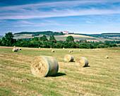 FRANCE, Burgundy, hay bales in countryside