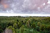 INDONESIA, Mentawai Islands, Kandui Surf Resort, elevated view of Karangmajat Island with the Indian Ocean against a cloudy sky