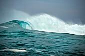 INDONESIA, Mentawai Islands, Kandui Resort, a breaking wave at Bankvaults
