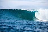 INDONESIA, Mentawai Islands, Kandui Resort, shot of a wave at Bankvaults