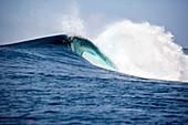 INDONESIA, Mentawai Islands, Kandui Resort, a wave breaking at Bankvaults