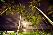 INDONESIA, Mentawai Islands, Kandui Resort, palm trees with Indian Ocean at night, moonrise