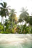 INDONESIA, Mentawai Islands, Kandui Resort, resort with palm trees and beach