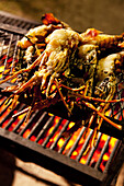 MAURITIUS, Chemin Grenier, lobster on the grill at the Fish and Rum Shack beach dinner, Hotel Shanti Maurice